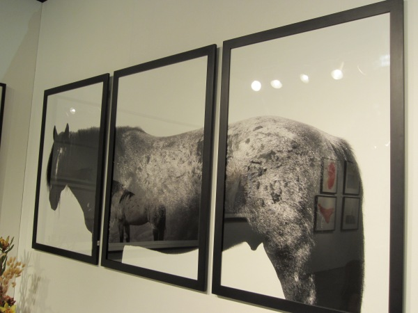 Loved this photography by Jennifer MaHarry from the G2 Gallery in Venice, CA