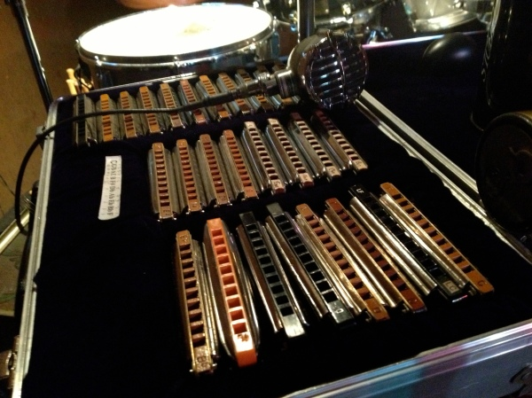 Quite a collection of harmonicas